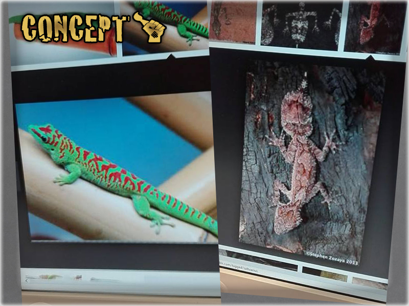 gecko-mage-concept-1